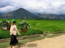 Circuit Découverte des trésors de montagnes du nord Vietnam en 7 jours dès 235 usd