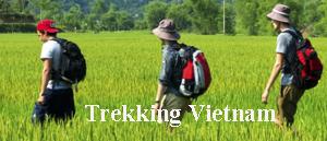 famille voyage vietnam