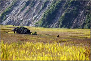 Sapa Vietnam Nord en Novembre