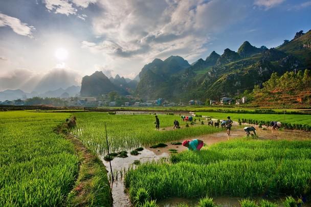 Routes à travers des paysages spectaculaires, Dong Van
