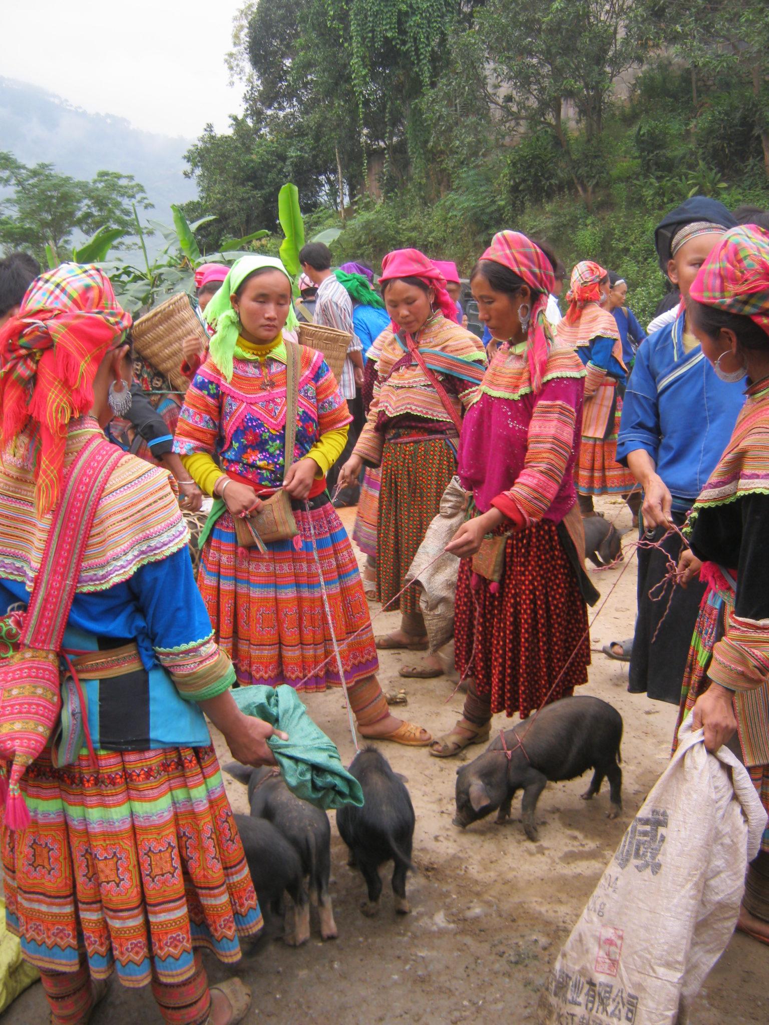 Cochons Marché Xin Man, ou Coc Pai, Ha Giang
