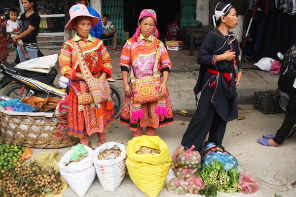 Les Hmong Fleurs Marché Hoang Su Phi Ha Giang