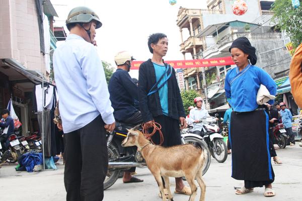 Negociation au Marché Hoang Su Phi Ha Giang
