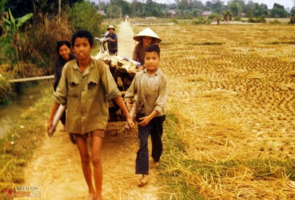 Recolte Nord Vietnam