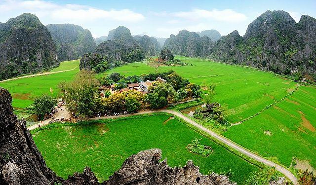 Temple de Thái Vi